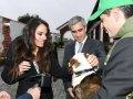 Leyla Əliyeva Balaxanıda sahibsiz itlərə qayğı mərkəzinin açılışında iştirak edib